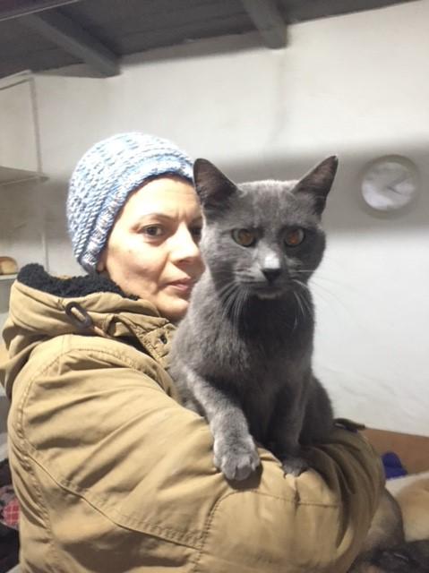 LEA (ex LOLLO BRIGITA) - chat femelle, née en 2015 - CAMELIA BUCAREST - Adoptée par Veronica (Belgique) Img_9135