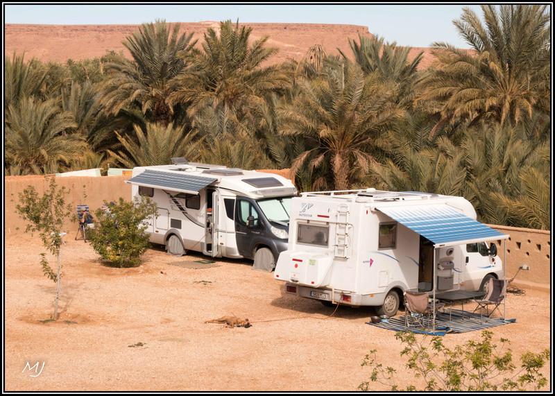 [Maroc Camp/Dernières nouvelles] Hakkou AOUFOUSS Img_5421