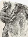 Galerie finie =). - Page 12 Numari29