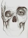 Quelques dessins [stylo] :). [Edit 01] Qfehqe10