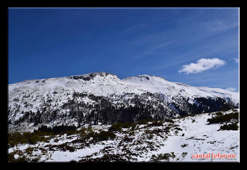 Entre col de Serre et Puy Mary Dsc_1210
