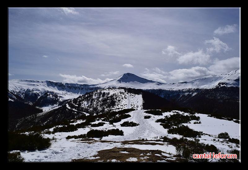 Entre col de Serre et Puy Mary Dsc_1213