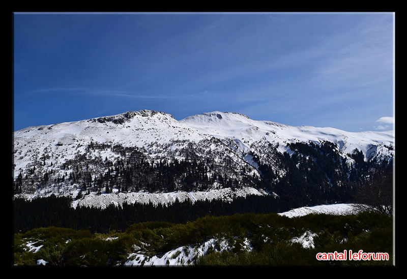 Entre col de Serre et Puy Mary Dsc_1214