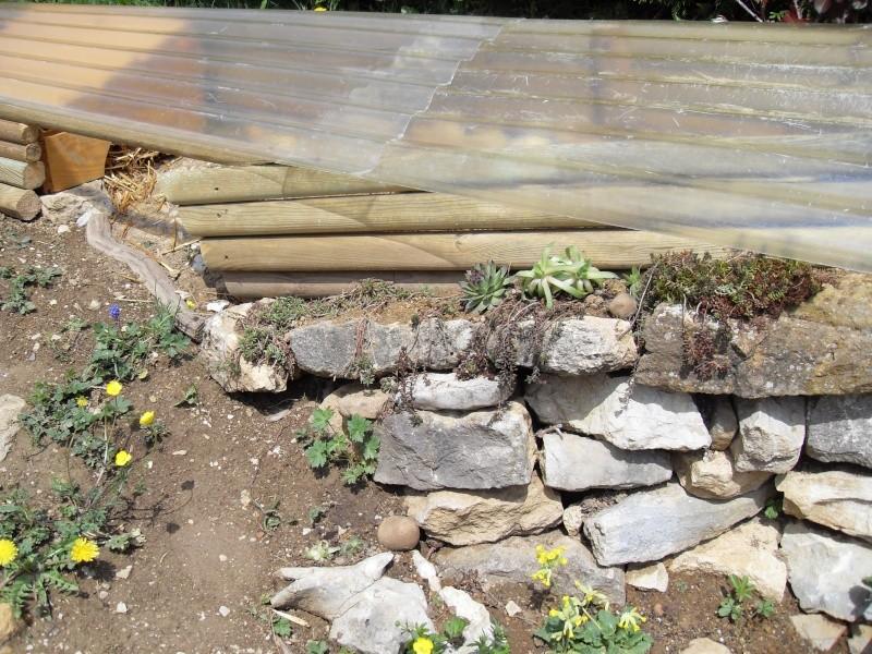 nouvelle fosse d'hibernation Sdc10130