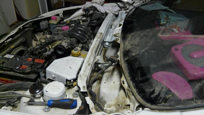 notre show car (fiat bravo) P1060438
