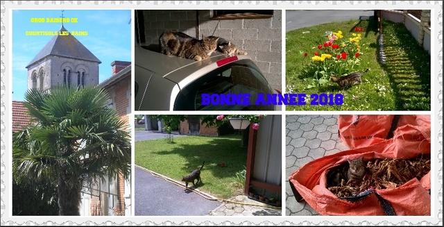 Hello earth:votre journée sur notre petite planète - Page 16 Bonne_10