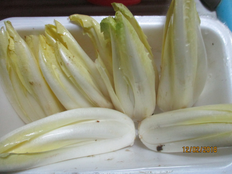 chicon endive  - Page 4 Img_7510
