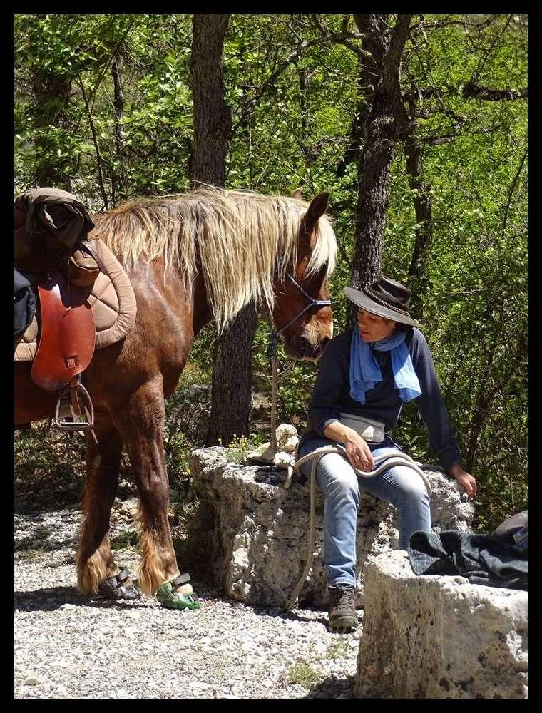 """ON VOTE Concours photos """"Nos chevaux et la tendresse"""" 18342710"""