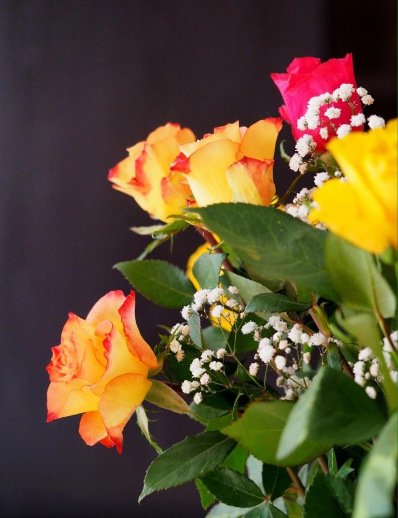 Pour fêter l'arrivée du printemps... P3195710