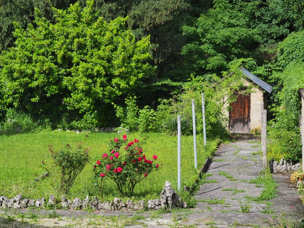 En allant à la cabane au fond du jardin P5266812
