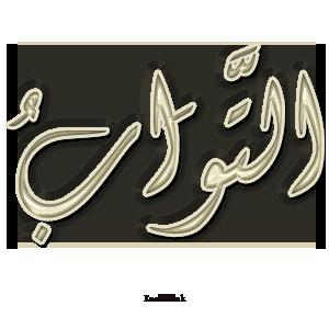Gems Of The Heart - Shaikh Ibrahim Zidan 17a10