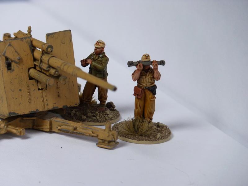Projet Afrikakorps - Page 3 P1060842