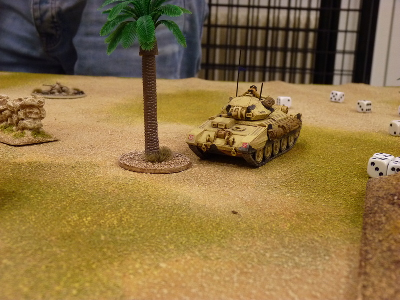 Campagne Afrique du Nord 1942 Tank War, Bolt action - Page 2 P1060873