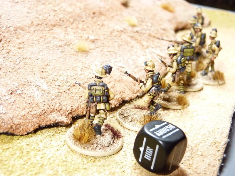 Campagne Afrique du Nord 1942 P1060924