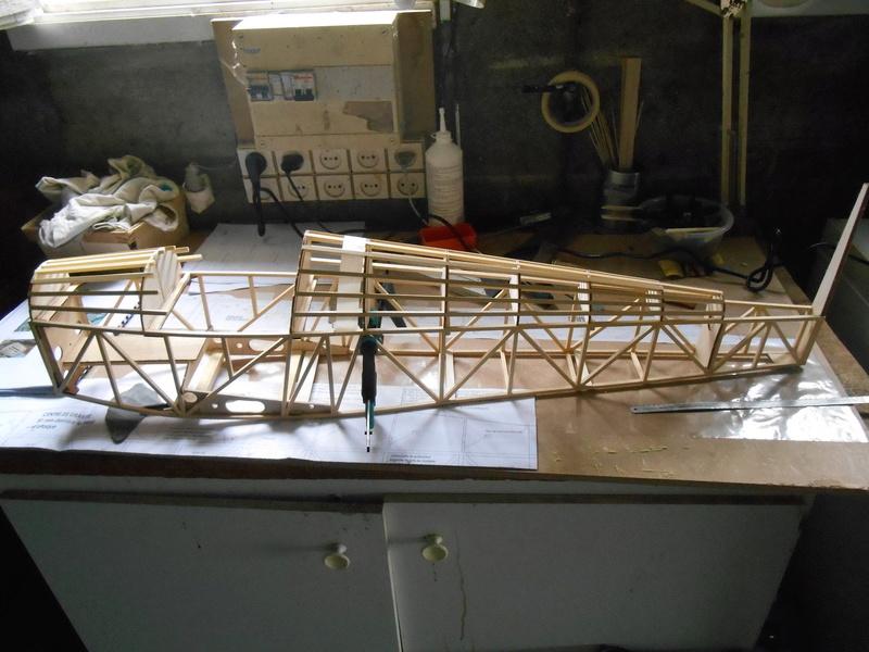 Belle 1ère construction de Frédéric Druine Turbulent Dscn1610