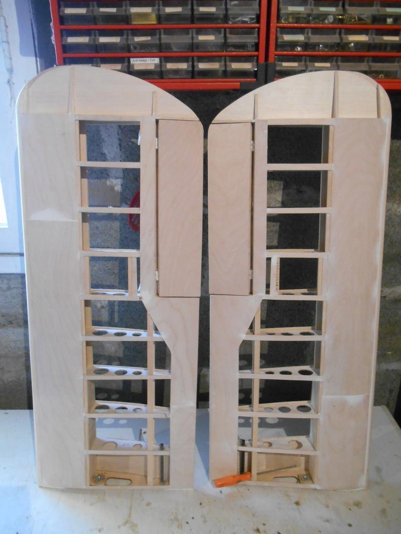 Belle 1ère construction de Frédéric Druine Turbulent Dscn1911