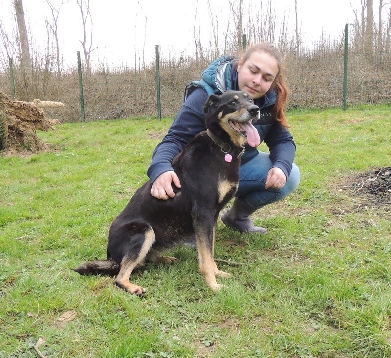 BETTY  X BERGER BEAUCERON - Page 2 Diman126