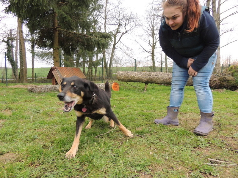BETTY  X BERGER BEAUCERON - Page 2 Diman128