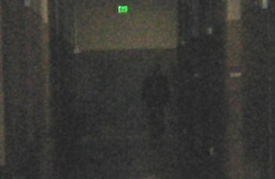 Le spectre d'un corps entier capturé sur le vif 21010