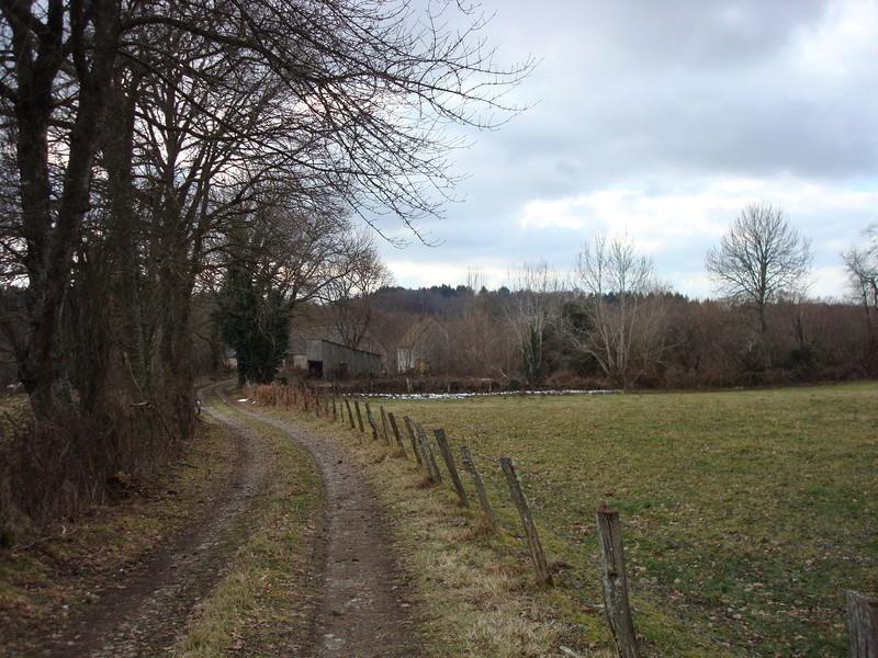 En Creuse... Dsc04411