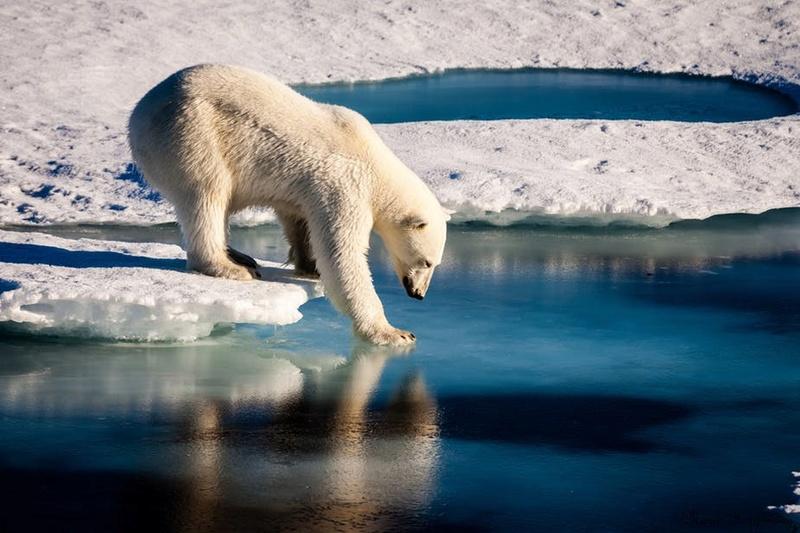 كيف أصبحت مياه المحيط القطبي الشمالي مالحة Image-10