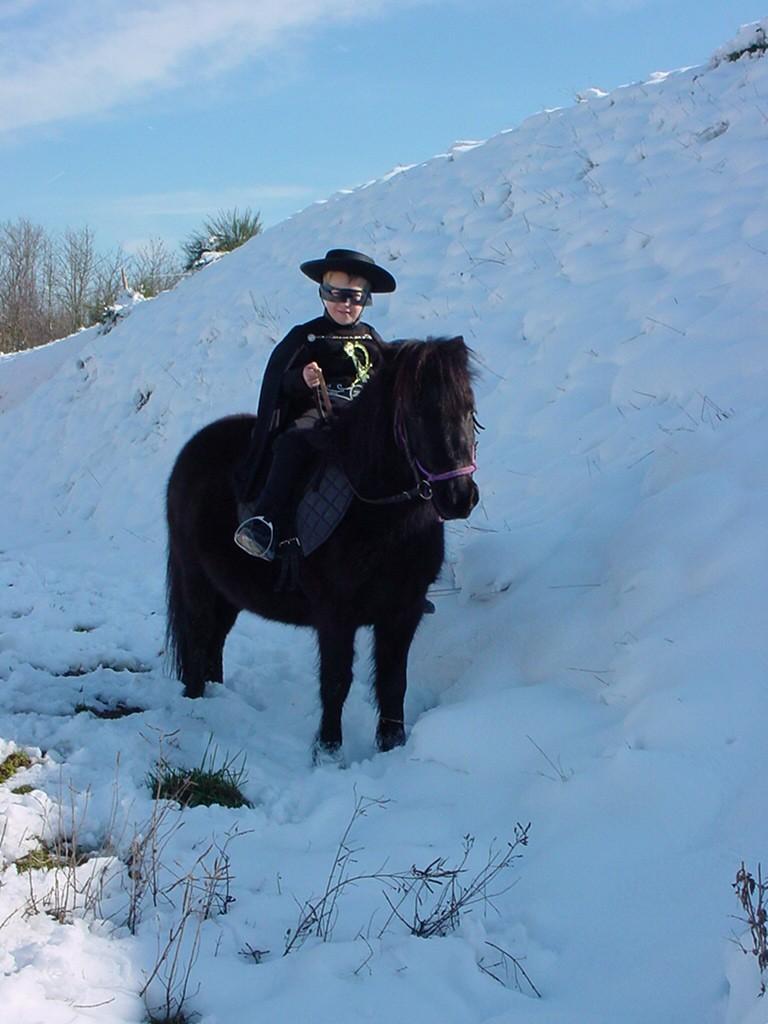 Le cheval et la neige, gagnant : Chris - Page 3 Nico_e10