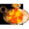 les potions de vie : vue d'ensemble 12210