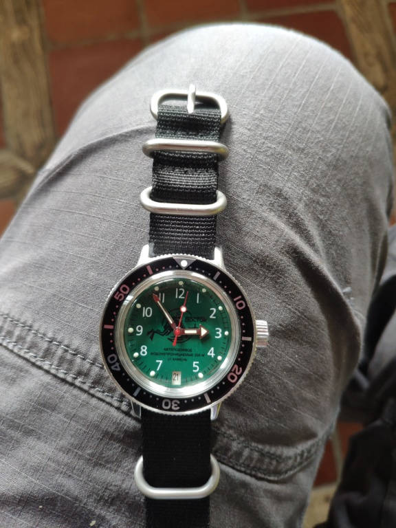 Amphibia 420386, bientôt ma première Vostok! 15763311