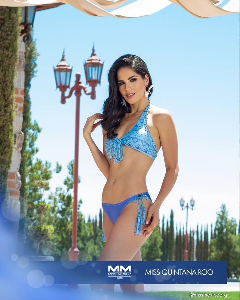 Round 15th : Miss México 2018 31543411