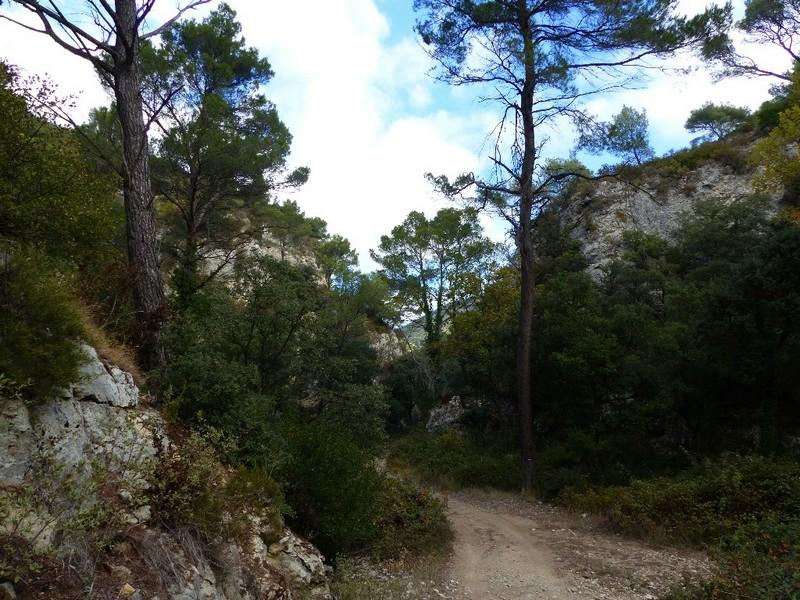 Randonnée plus calme de JM aux Borrys -Vallon de la Tapi -Jeudi 9 novembre 2017 00212