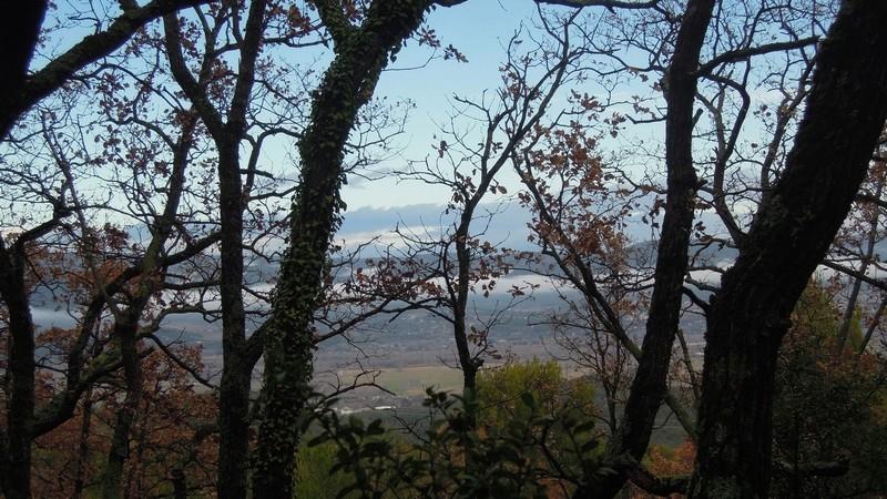 Randonnée plus calme de JM à la Roque-d'Antheron-Jeudi 14 décembre 2017 00416