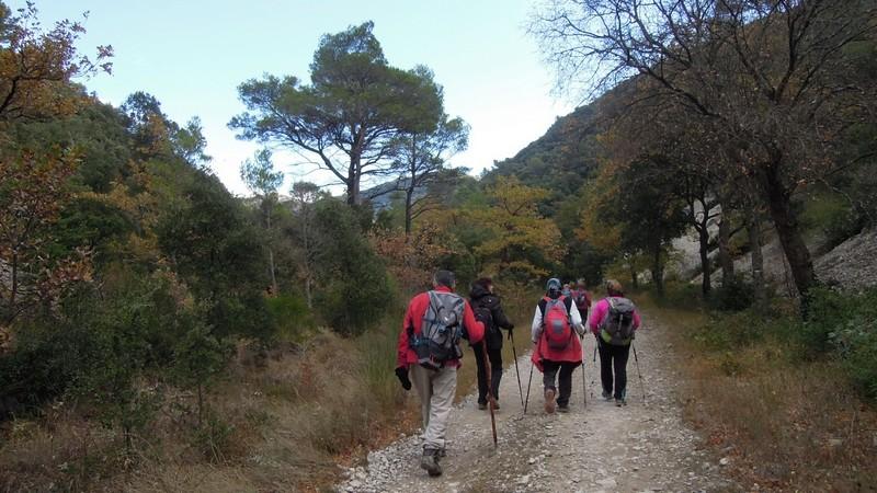 Randonnée plus calme de JM aux Borrys -Vallon de la Tapi -Jeudi 9 novembre 2017 00612