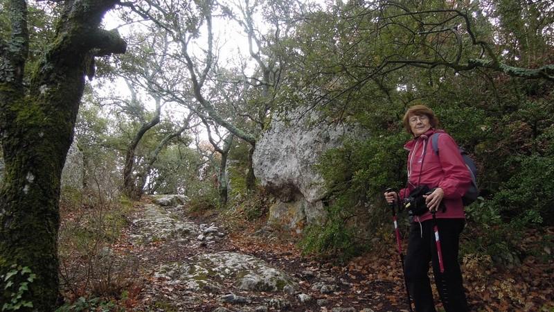 Randonnée plus calme de JM à la Roque-d'Antheron-Jeudi 14 décembre 2017 00615