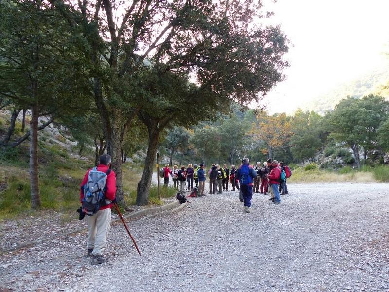 Randonnée plus calme de JM aux Borrys -Vallon de la Tapi -Jeudi 9 novembre 2017 00912