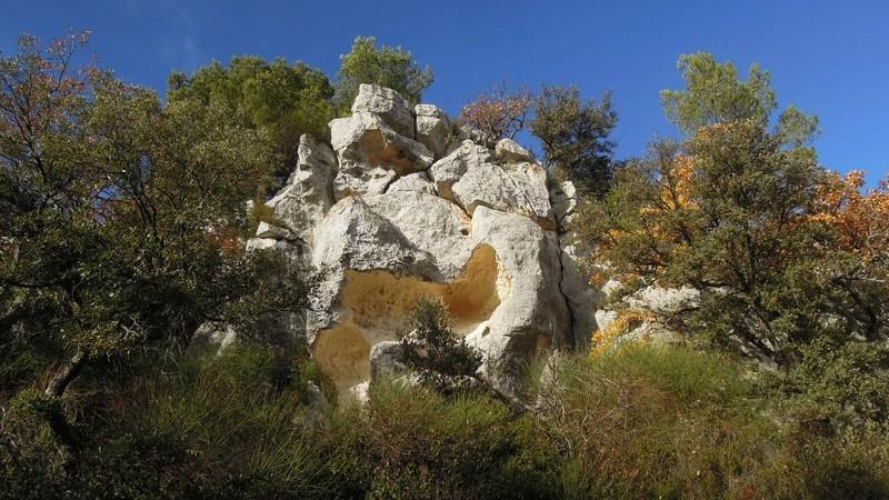 Randonnée plus calme de JM à la Roque-d'Antheron-Jeudi 14 décembre 2017 01117