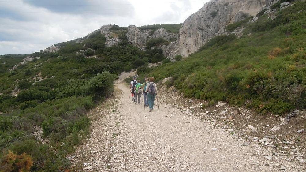 Randonnée plus calme de JM à la Fare les Oliviers  le jeudi 7 Juin 2018 01333