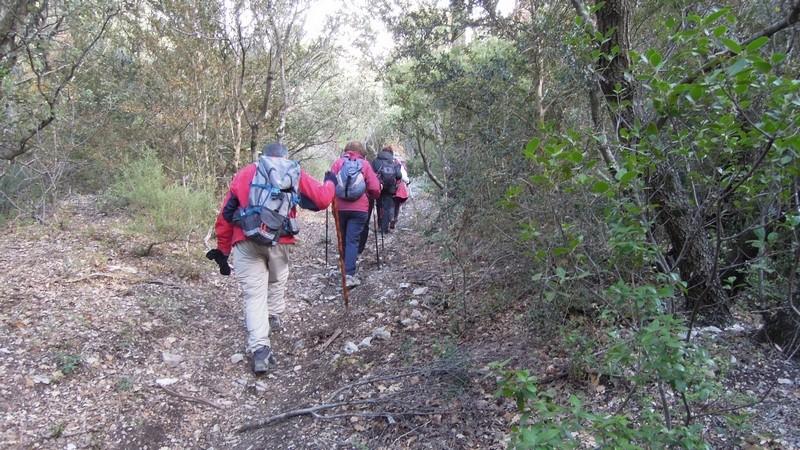 Randonnée plus calme de JM aux Borrys -Vallon de la Tapi -Jeudi 9 novembre 2017 01412