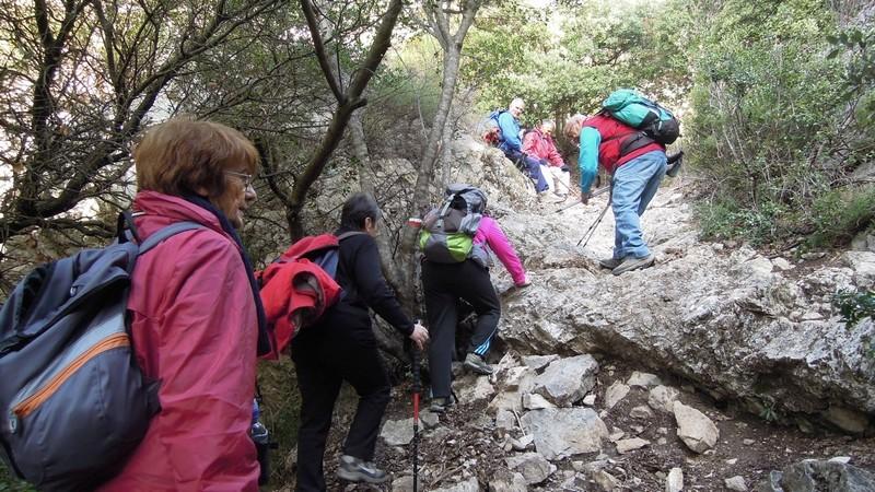 Randonnée plus calme de JM aux Borrys -Vallon de la Tapi -Jeudi 9 novembre 2017 01612