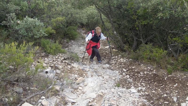 Randonnée plus calme de JM aux Borrys -Vallon de la Tapi -Jeudi 9 novembre 2017 01812