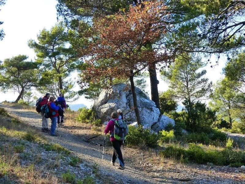 Randonnée plus calme de JM aux Barres de Castillon -Jeudi 16 Novembre 2017 02213