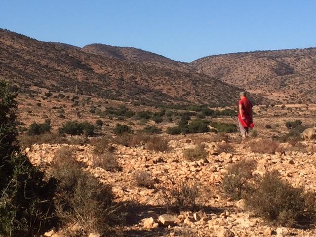 [Maroc Camp/Dernières nouvelles] Taux de remplissage des campings hiver  2017/2018 - Page 2 524f1510