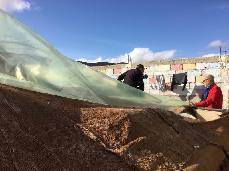 [Maroc Camp/Dernières nouvelles]  BOUIZAKARNE : Camping Tinnoubga   - Page 6 D997d310