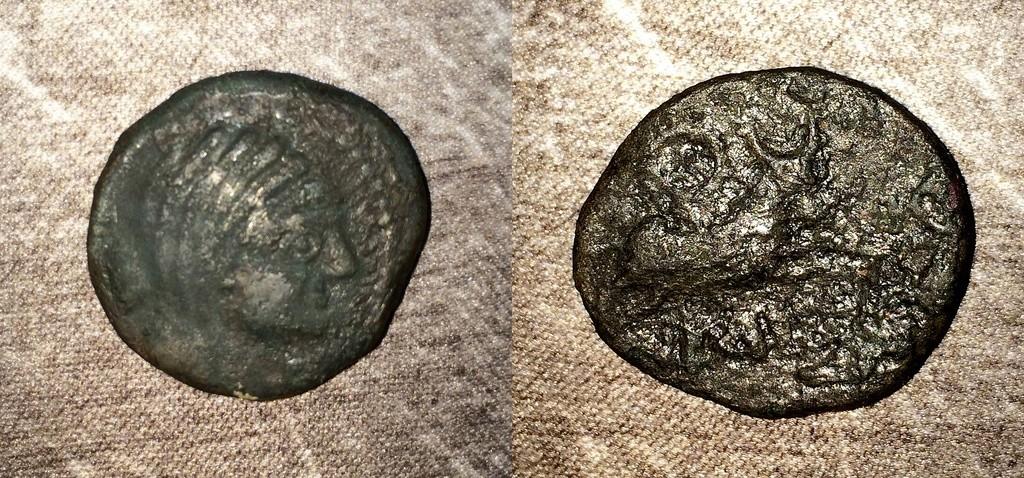 Un bronze au taureau  Img_0313