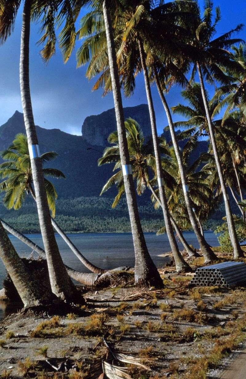 [CAMPAGNES C.E.P.] TAHITI - TOME 2 Img_0497