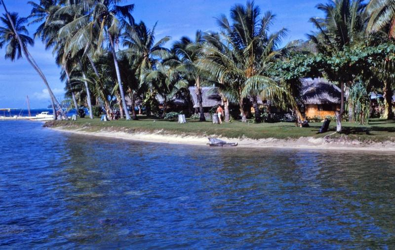 [CAMPAGNES C.E.P.] TAHITI - TOME 2 Img_0502