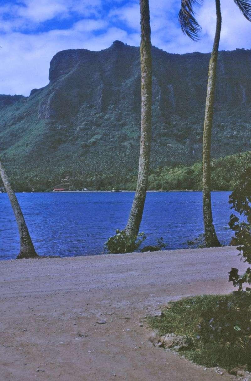 [CAMPAGNES C.E.P.] TAHITI - TOME 2 Img_0508