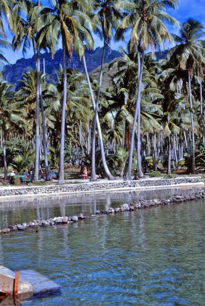 [CAMPAGNES C.E.P.] TAHITI - TOME 2 Img_0510