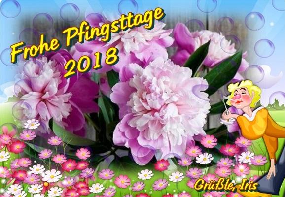 Schöne Pfingst - Feiertage - Seite 2 Forum13