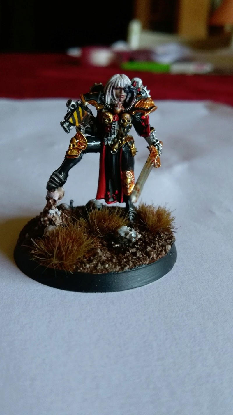 Galerie d'Imperial Fist - Page 2 Imag0313