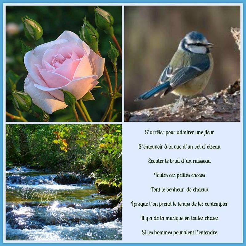 22 avril  Journée Mondiale de la Terre  Nature10